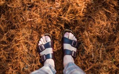 How To Wash Birkenstock Sandals